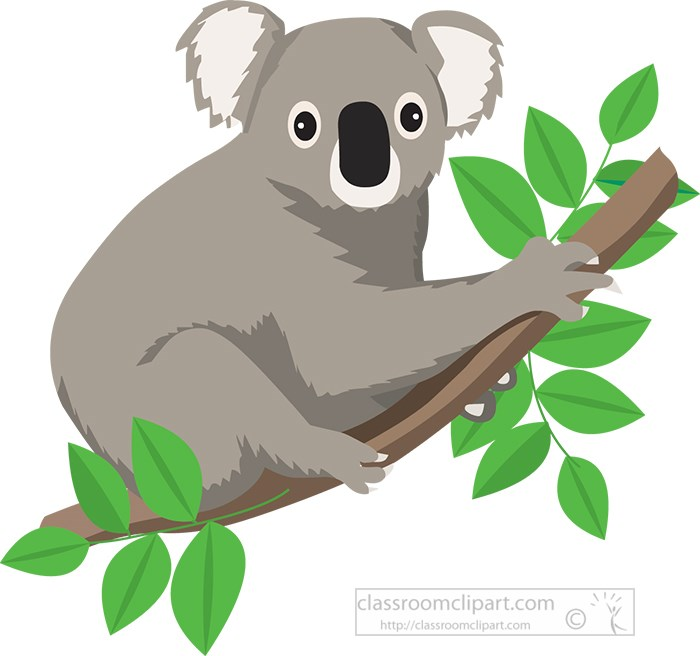koalas-on-tree-surrounded-by-leaves.jpg