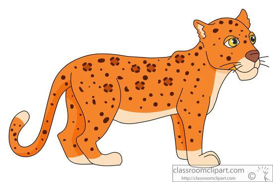 baby-leopard-914.jpg