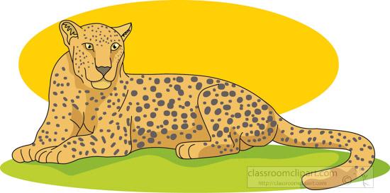 leopard_312_05A.jpg