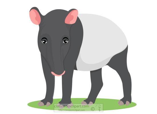 clipart-herbivore-mammal-tapir-animal.jpg
