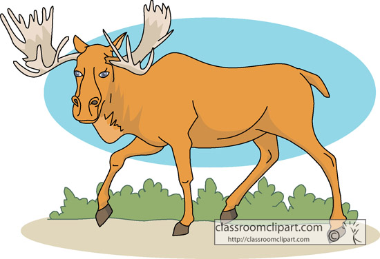 moose_animal_clipart.jpg