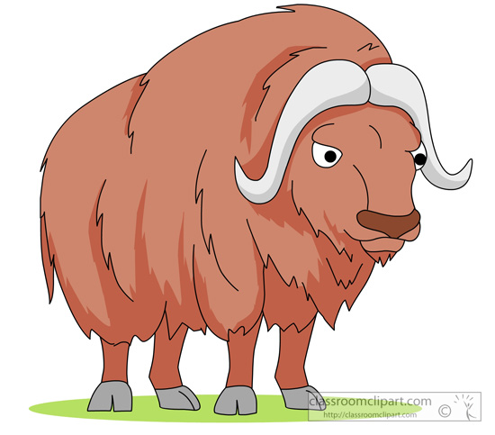 musk_ox_front_view_clipart.jpg