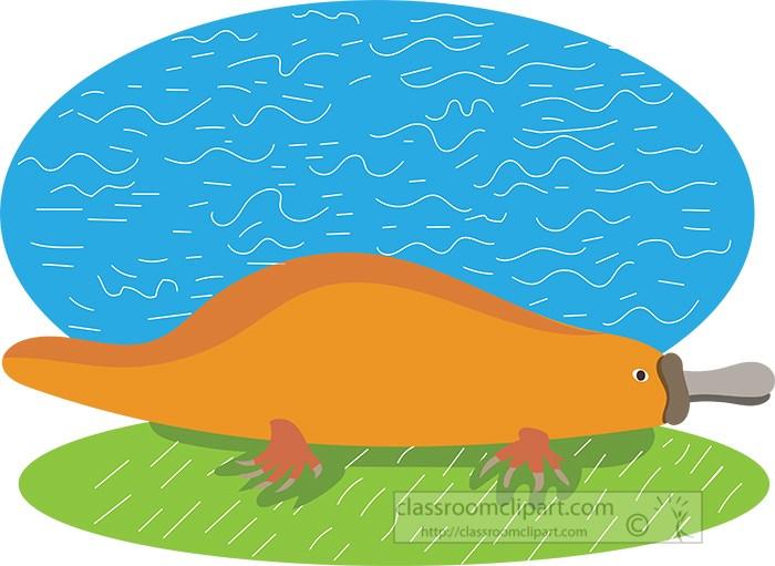 platypus-illustration-vector.jpg
