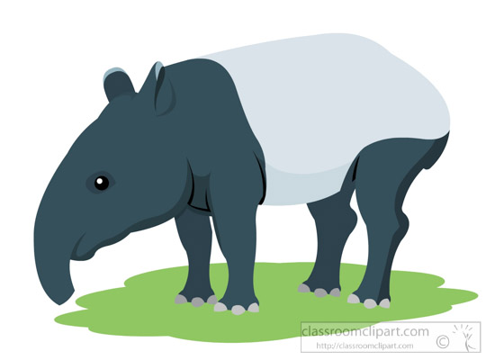 tapir-standing-on-all-four-legs-clipart.jpg