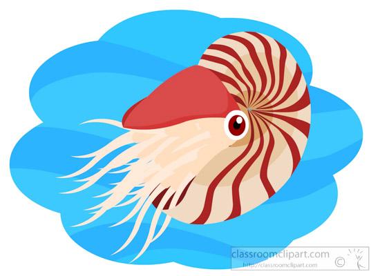 ammonite-mollusk-clipart-614.jpg
