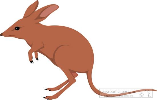 bandicoot-potoroo-marsupial-clipart-617.jpg