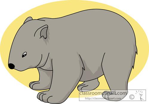 marsupial_wombat_713.jpg