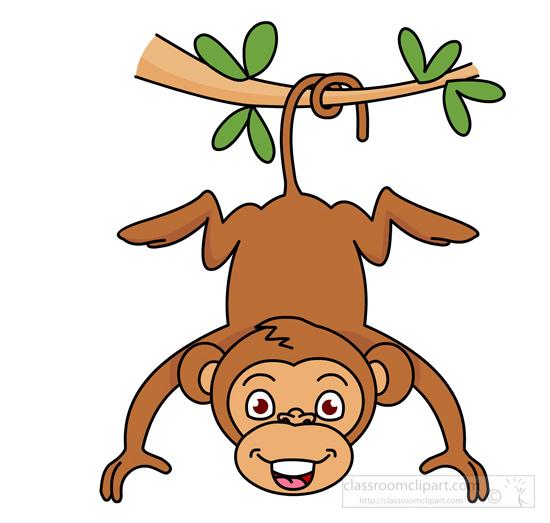 monkey-hanging-from-tree.jpg