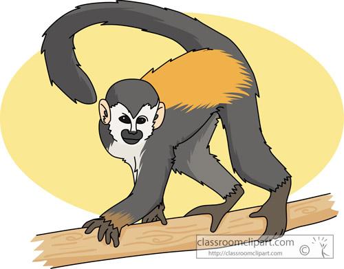 monkey_squirrel_tree_713.jpg