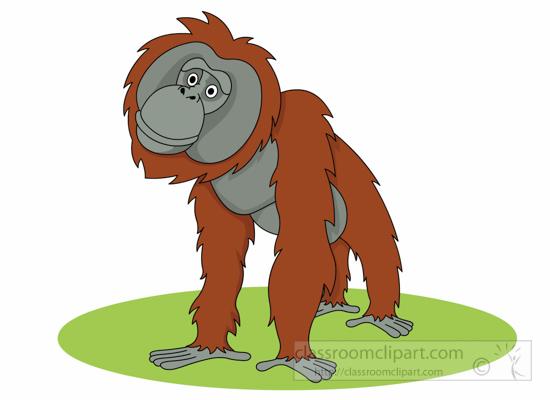 orangutan-clipart-126.jpg