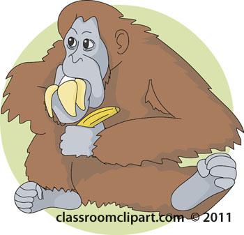 orangutan-color-02-112.jpg