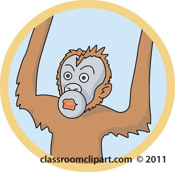 orangutan-color-05A.jpg