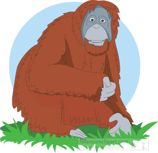 orangutan-sitting-in-grass-clipart-image-21232.jpg
