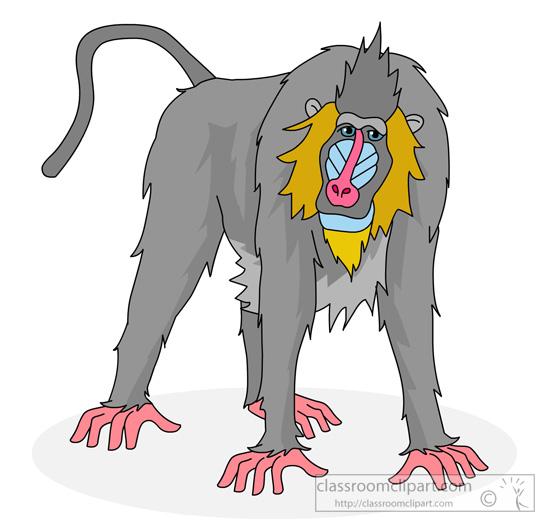 primate-mandrill-clipart.jpg
