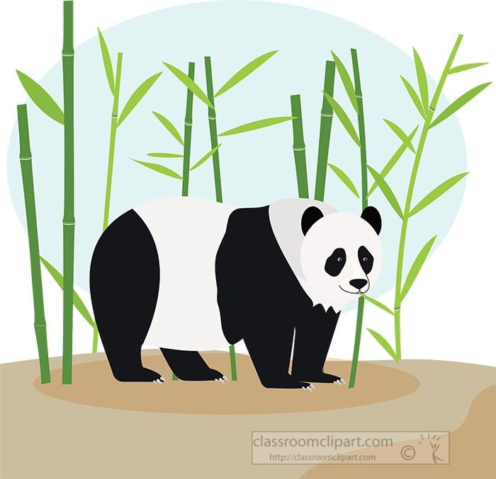 panda-bear-standing-near-bamboo-trees-clipart.jpg
