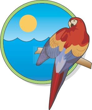 macaw_50.jpg