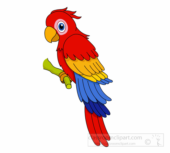 Parrot Clipart : red-blue-yellow-macaw-parrot-clipart-127 ...
