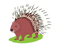 free porcupine clipart clip art pictures graphics illustrations rh classroomclipart com porcupine image clipart porcupine clipart free