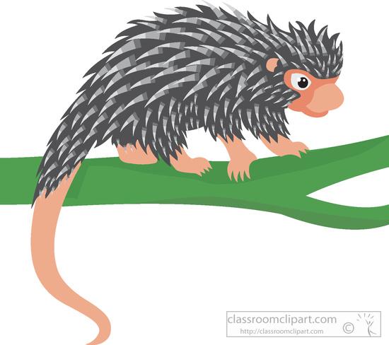brazilian-porcupine-clipart-59167.jpg