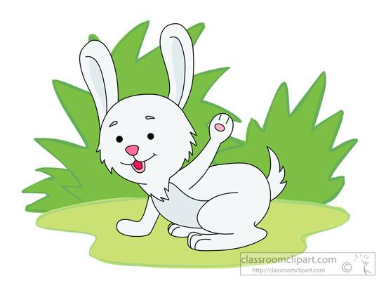 cute-little-rabbit-on-grass-428.jpg