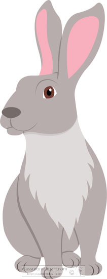 long-eared-rabbit-animal-clipart-618.jpg