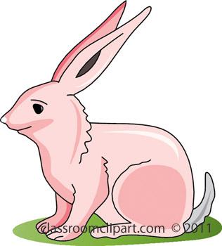 pink_rabbit_411B.jpg