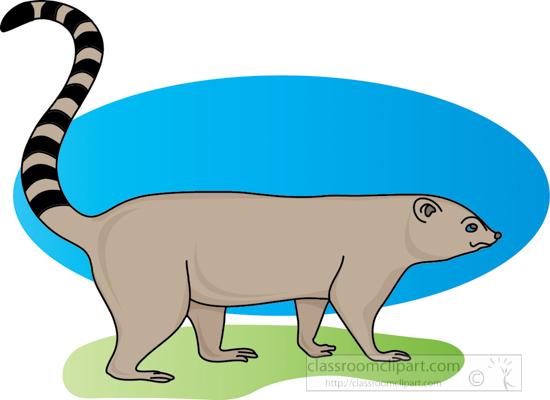 100+ Cartoon Raccoon Tail – yasminroohi