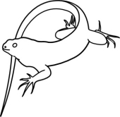 Free Iguana Clipart - Clip Art Pictures - Graphics - Illustrations