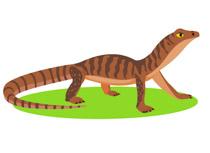 reptiles lizard clipart clipart clip art pictures graphics rh classroomclipart com