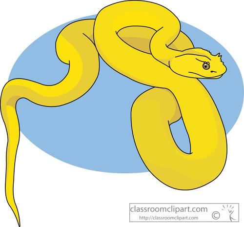 eyelash_viper_snake.jpg