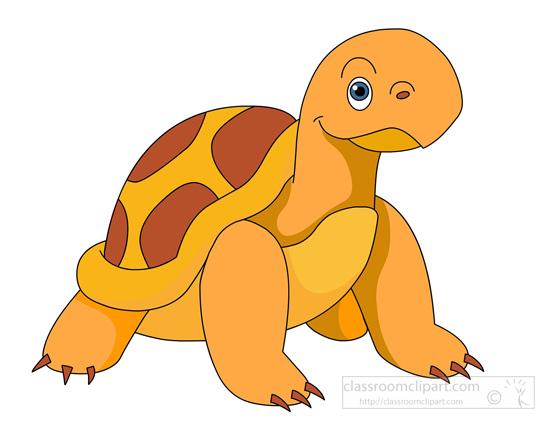 turtle-tortoise-0914.jpg