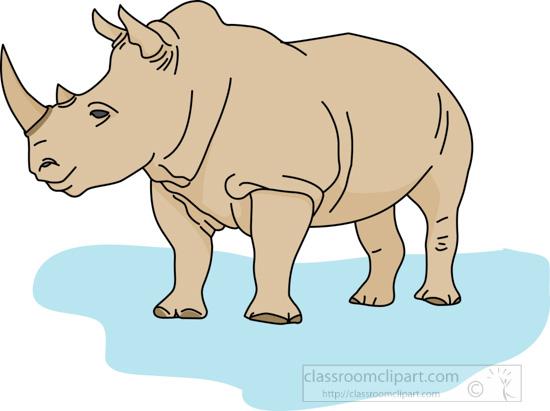 rhinoceros_04B.jpg