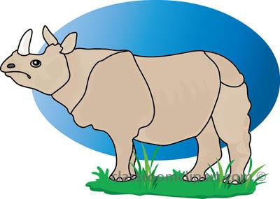 rhinoceros_327_1b.jpg