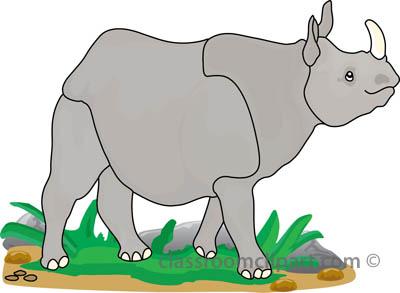 rhinoceros_327_2A.jpg