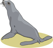 free seal clipart clip art pictures graphics illustrations rh classroomclipart com sea clipart seal clip art images