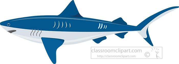 vector-illustration-of-bull-shark-clipart.jpg