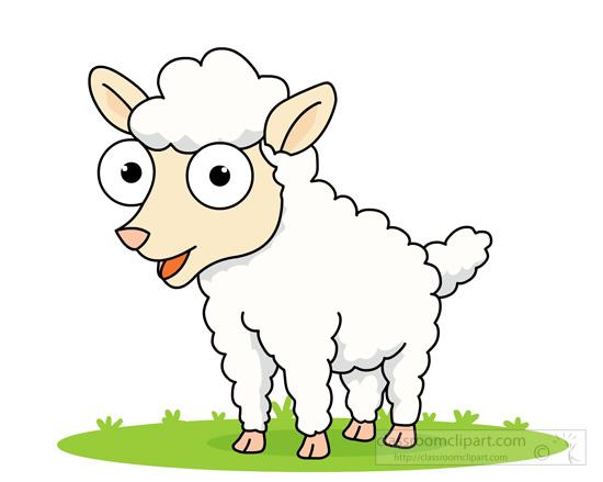 big-eyed-white-sheep.jpg