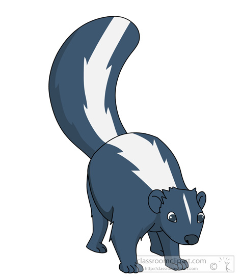 skunk-animal-clipart-427.jpg