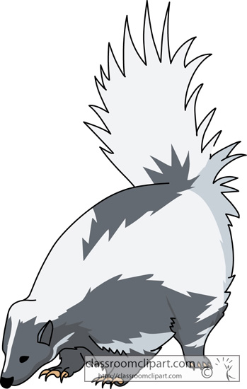 skunk_animal_clipart.jpg