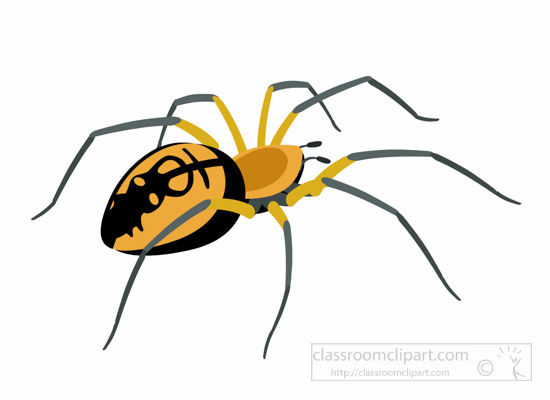 yellow-garden-spider-insect-clipart.jpg
