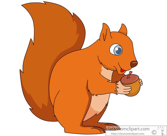 Squirrel With Nut Clip Art For Pinterest