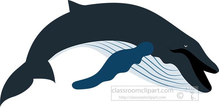 blue-whale-vector-clipart.jpg