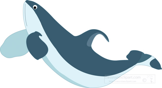 humpback-whale-clipart-graphic-image-00987.jpg