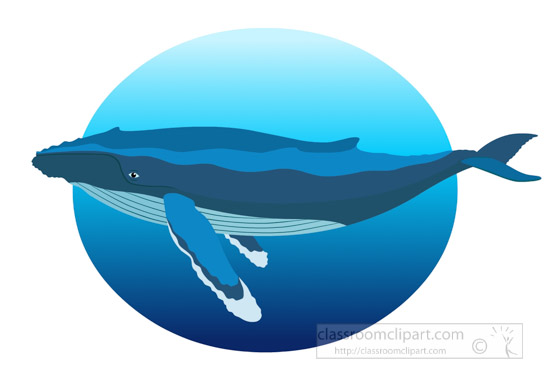 humpback-whale-in-natural-environment-clipart.jpg