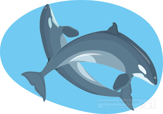 two-whales-swimming-together-clipart-graphic-image-0309.jpg