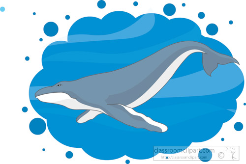 whale-swimming-in-water-clipart-1622.jpg