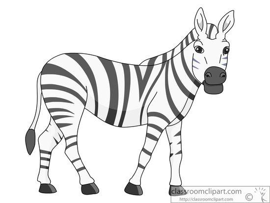 african-zebra-914.jpg