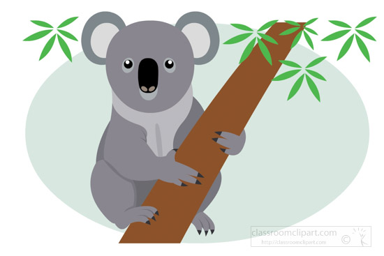 australian-koala-on-tree-clipart.jpg