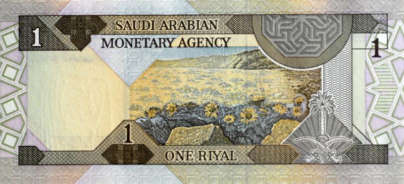 saudi-arabia-banknote-217.jpg