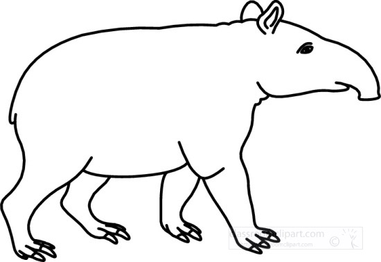 Animals 14 09 09 23mbw classroom clipart for Tapir coloring page